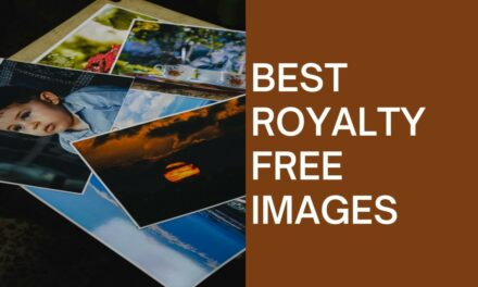 Best qualities of royalty-free images to download from the top website